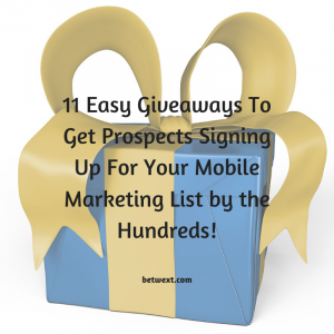11-Easy-Giveaways-To-Get-Prospects-Signing-Up-For-Your-Mobile-Marketing-List-by-the-Hundreds